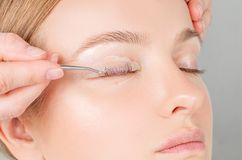 Woman doing eyelashes lamination, staining, curling, laminating and extension for lashes royalty free stock photography