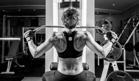 Woman doing fitness Stock Photography