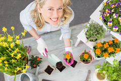 Woman doing gardening in studio Stock Photography