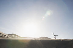 Woman doing handstand in desert Royalty Free Stock Images