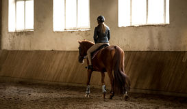 Woman doing horseback riding in manege Stock Images