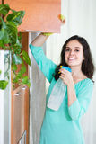 Woman doing household cleaning Stock Photo