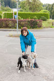 A woman is doing leash her two dogs Royalty Free Stock Images