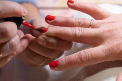 The master applies the Polish on the nails. the process of creating a manicure hands close-up. nail care stock photos