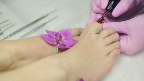 Woman doing a pedicure. Professional pedicure with a orchid flower at spa salon stock video footage
