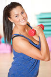 Woman doing power exercise at sport gym. Beautiful sport woman doing power fitness exercise at sport gym. Dumbbell Stock Images