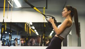Woman doing push ups with trx straps in gym, copy space. Panorama royalty free stock photos