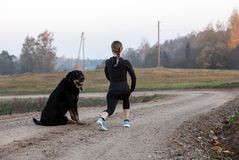 Woman doing stretching exercises. An athletic woman doing stretching exercises. Morning gymnastics with dog royalty free stock photography