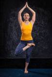 Woman doing yoga asana Vrikshasana tree po Stock Photography
