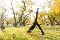 Woman doing yoga in autumn park Royalty Free Stock Photography