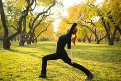 Woman doing yoga in autumn park Royalty Free Stock Image