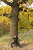 Woman doing yoga under big tree Stock Image