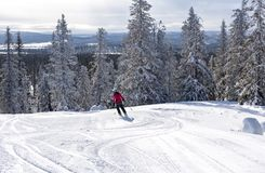 Woman downhill skiing in Lapland Finland Royalty Free Stock Images