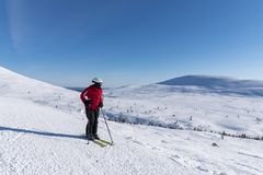 Woman downhill skiing in Lapland Finland Royalty Free Stock Photo