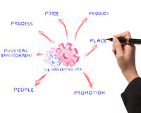 Woman drawing business process, marketing mix Royalty Free Stock Images