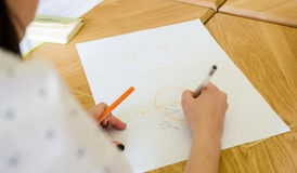 Woman drawing a chart. Woman drawing a pie chart on a white paper sheet Royalty Free Stock Photo