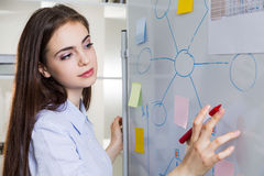 Woman drawing graphs on whiteboard Stock Photos