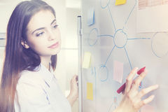 Woman drawing graphs on whiteboard Royalty Free Stock Photography