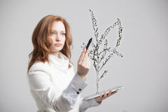 Woman drawing plant Royalty Free Stock Photo