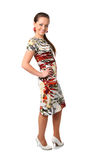 Woman in the dress Royalty Free Stock Image