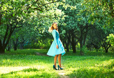 Woman in dress among apple blossoms Royalty Free Stock Images