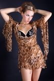 Woman in dress with leopard style Stock Images