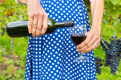Woman in dress pouring red wine bottle in glass Royalty Free Stock Images