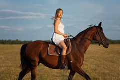 Woman in dress riding on a brown horse. Woman in white dress riding on a brown horse Royalty Free Stock Photography