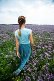 Woman in a dress. Walks on the summer meadow full of purple flowers stock photos