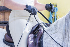 Woman on a dressage session Royalty Free Stock Photos