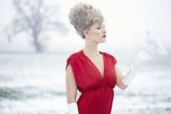 Woman dressed as Mrs claus Royalty Free Stock Photography