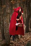 Red Riding Hood cosplay in the forest royalty free stock photos