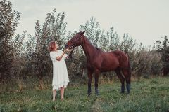 A woman feeds a horse. A woman dressed in a white dress, feeds a horse with a red apple Royalty Free Stock Photo