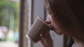 Woman drinking coffee in restaurant or cafe stock video footage