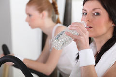 Woman drinking after exercise Royalty Free Stock Image