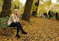 The woman drinking tea in park in the autumn Stock Images