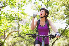 Woman drinking water while cycling Royalty Free Stock Photo