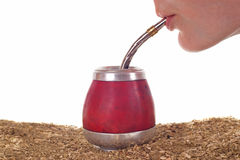 Woman drinking yerba mate Royalty Free Stock Photos