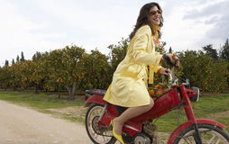 Woman Driving Bike. Sophisticated young woman on an old motorbike in an orange grove royalty free stock images