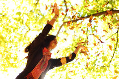Woman drop leaves in autumn park Stock Images