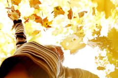 Woman drop up autumn leaves. Happy young woman drop up autumn leaves Royalty Free Stock Photo