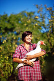 Woman with duck Stock Photos