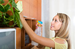 Woman dusting wooden furniture Stock Image