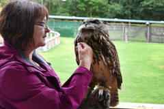 Woman and eagle owl Royalty Free Stock Images