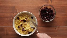 Eating cereal flakes with cranberries for breakfast. Woman eating corn cereal flakes with cranberries, healthy breakfast. Overhead shot stock video footage