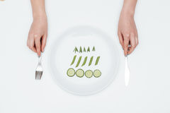 Woman eating cucumber, asparagus and rosemary on the plate Stock Photography