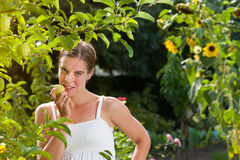 Woman eating a fresh apple Stock Photography