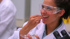 Woman eating seeds from petri dish stock footage