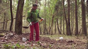 Woman ecologist in the forest digging a soil slit. With the shovel stock video