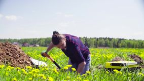 Woman ecologist on the meadow digging a soil slit.  stock video footage